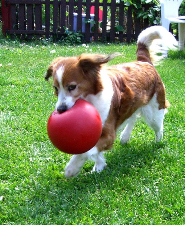 w-candy-ball-100607-2932