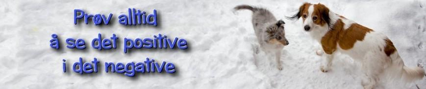 cropped-logo-tira-winnie-feb-2013.jpg