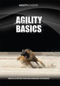 AgilityBasics_300 (2)