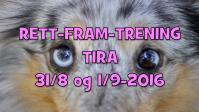 310816-TIRA-0